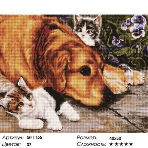 Количество цветов и сложность Верные друзья Алмазная вышивка мозаика Painting Diamond GF1155