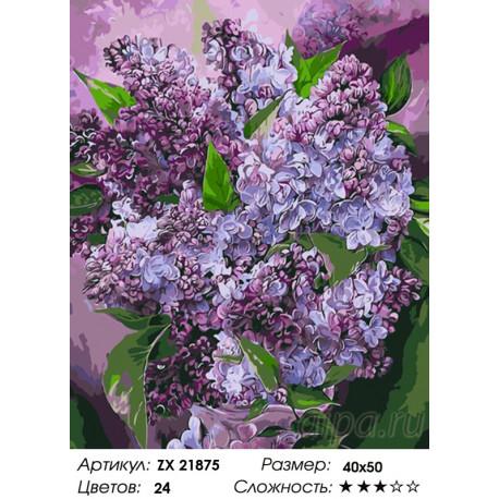 Количество цветов и сложность Красота сирени Раскраска картина по номерам на холсте ZX 21875