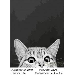 я все вижу Раскраска картина по номерам на холсте ZX 21909