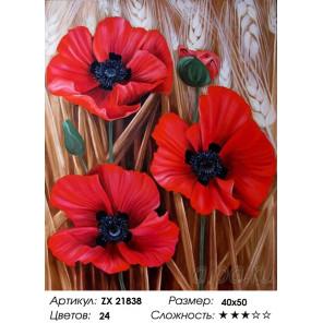 Количество цветов и сложность Трио маков Раскраска картина по номерам на холсте ZX 21838