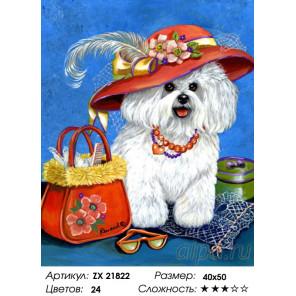 Количество цветов и сложность Собачка в шляпке Раскраска картина по номерам на холсте ZX 21822