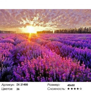 Количество цветов и сложность Лаванда в лучах заката Раскраска картина по номерам на холсте ZX 21450