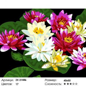 Цветы лотоса Раскраска картина по номерам на холсте ZX 21446