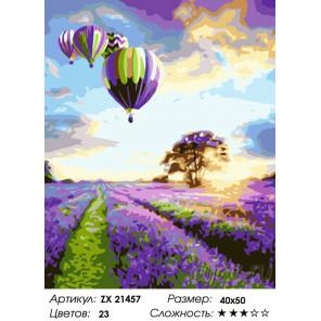 Количество цветов и сложность Воздушные шары над лавандовым полем Раскраска картина по номерам на холсте ZX 21457