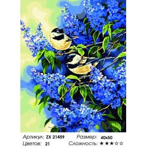 Количество цветов и сложность Синички в серени Раскраска картина по номерам на холсте ZX 21459