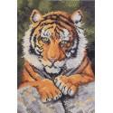 Бенгальский тигр 45475 Набор для вышивания Bucilla