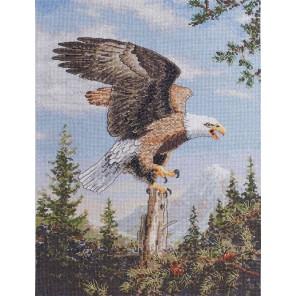 Орел Набор для вышивания Bucilla