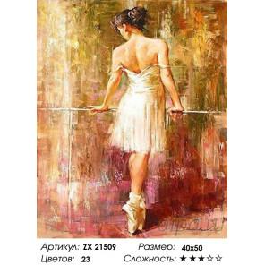 Количество цветов и сложность Балерина у станка Раскраска картина по номерам на холсте ZX 21509