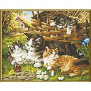 Кошка с котятами Раскраска по номерам акриловыми красками Schipper (Германия) Картина по цифрам