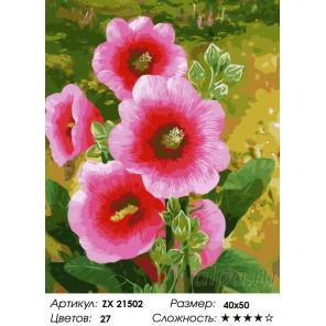 Количество цветов и сложность Розовая мальва Раскраска картина по номерам на холсте ZX 21502