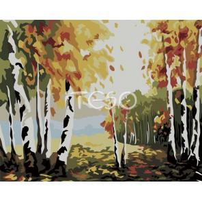 Березовая роща Раскраска по номерам акриловыми красками на холсте Iteso Картина по цифрам