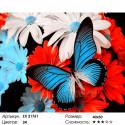 Бабочка на цветах Раскраска картина по номерам на холсте