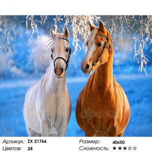 Количество цветов и сложность Лошади зимой Раскраска картина по номерам на холсте ZX 21766
