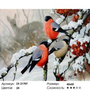 Количество цветов и сложность Снегири зимой Раскраска картина по номерам на холсте ZX 21707