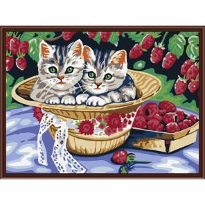 Котята в саду Раскраска по номерам акриловыми красками на холсте Color Kit Рисование по цифрам