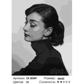 Количество цветов и сложность Одри Хепберн Раскраска картина по номерам на холсте ZX 20347