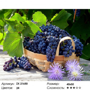 Количество цветов и сложность Корзина винограда Раскраска картина по номерам на холсте ZX 21650
