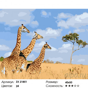 Количество цветов и сложность Три жирафа Раскраска картина по номерам на холсте ZX 21851