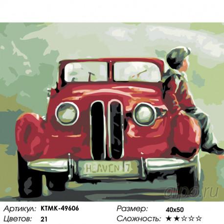 Количество цветов и сложность Папина гордость Раскраска картина по номерам на холсте KTMK-49606