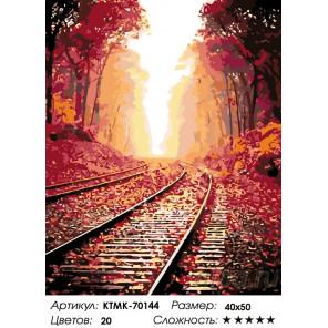 Количество цветов и сложность Дальний путь Раскраска картина по номерам на холсте KTMK-70144