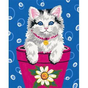 Котенок Раскраска по номерам акриловыми красками Dimensions Картина по цифрам