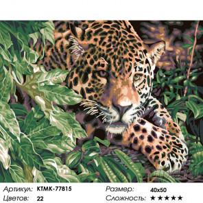 Леопард в зарослях Раскраска картина по номерам на холсте KTMK-77815