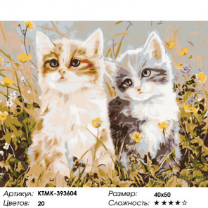 Количество цветов и сложность Котята на лугу Раскраска картина по номерам на холсте KTMK-393604