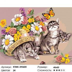 Количество цветов и сложность Три котенка на прогулке Раскраска картина по номерам на холсте KTMK-393605