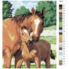 Раскладка Забота о жеребенке Раскраска картина по номерам на холсте KTMK-52879