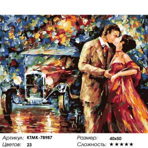 Количество цветов и сложность Романтика ночи Раскраска картина по номерам на холсте KTMK-78987