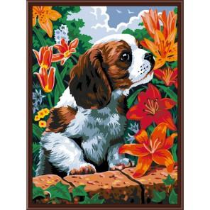 Щенок и лилии Раскраска по номерам акриловыми красками на холсте Color Kit Картина по цифрам
