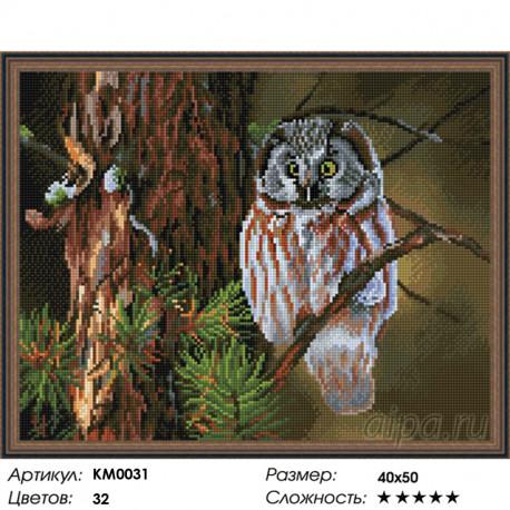 Количество цветов и сложность Ночной охотник Алмазная мозаика вышивка на подрамнике КМ0031