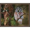 Ночной охотник Алмазная мозаика вышивка на подрамнике КМ0031