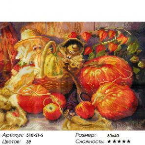 Количество цветов и сложность Домовые Алмазная вышивка мозаика на подрамнике Белоснежка 510-ST-S
