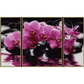 Орхидеи Триптих Раскраска по номерам акриловыми красками Schipper (Германия) Картина по цифрам
