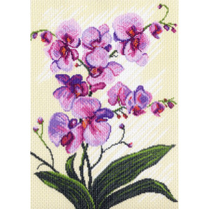 Орхидеи, композиция Канва с рисунком для вышивки Матренин посад