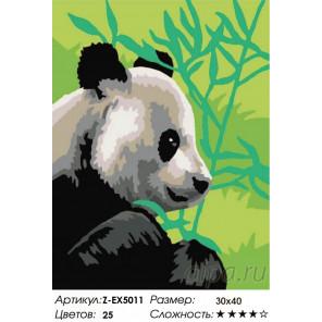 Количество цветов и сложность Панда и бамбук Раскраска картина по номерам на холсте Z-EX5011