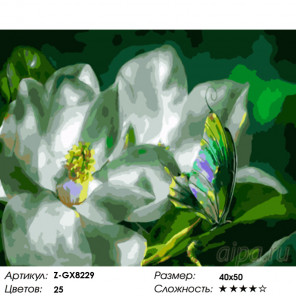 Количество цветов и сложность Аромат жасмина Раскраска картина по номерам на холсте Z-GX8229