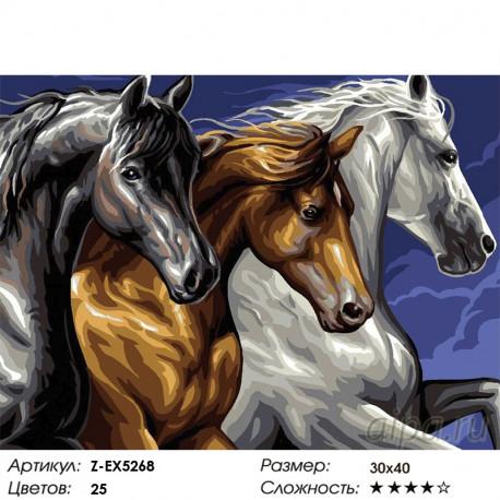 резвая тройка лошадей раскраска картина по номерам на холсте Z Ex5268