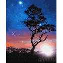 В звёздном сиянии Раскраска картина по номерам на холсте Z-GX23214