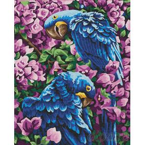 Гиацинтовые ара Раскраска картина по номерам на холсте Z-GX22309