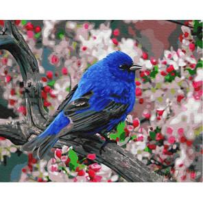 Синяя птица счастья Раскраска картина по номерам на холсте Z-GX23193