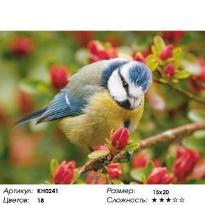 Синичка Раскраска по номерам на холсте Molly KH0241