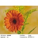 Гербера Раскраска по номерам на холсте Molly KH0248