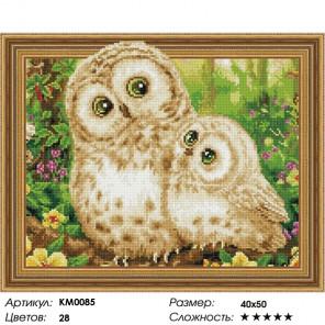 Количество цветов и сложность Совушки Алмазная мозаика вышивка на подрамнике 3D КМ0085