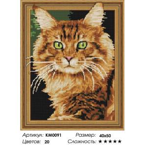 Количество цветов и сложность Рыжий кот Алмазная мозаика вышивка на подрамнике 3D КМ0091