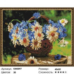 Количество цветов и сложность Ромашковое лето Алмазная мозаика вышивка на подрамнике КМ0097