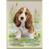 В рамке Малыш бассет Алмазная вышивка мозаика Риолис АМ0005