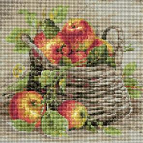 Спелые яблоки Алмазная вышивка мозаика Риолис АМ0015