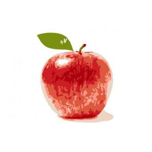 Яблоко Раскраска картина по номерам